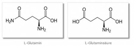 L-Glutamin und L-Glutaminsäure