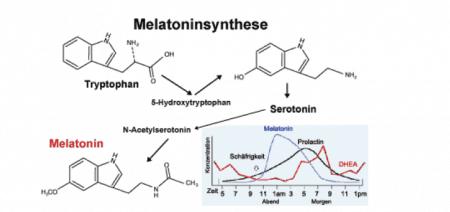 Melantoninsynthese