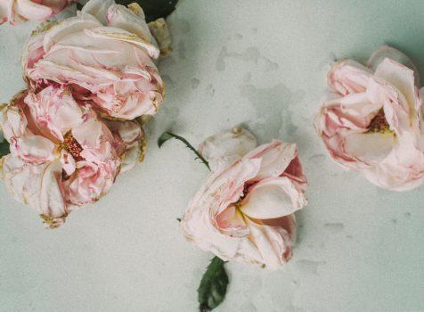Aromatasehemmer und Östrogendominanz