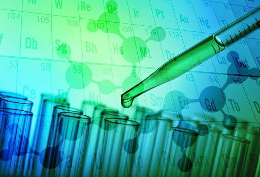 Innovative Diagnostik und Therapie hormonabhängiger Tumoren am Beispiel des Prostatakarzinom- und Mammakarzinom