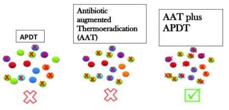 Antibiotic augmented Thermoeradication (AAT) AAT plus APDT